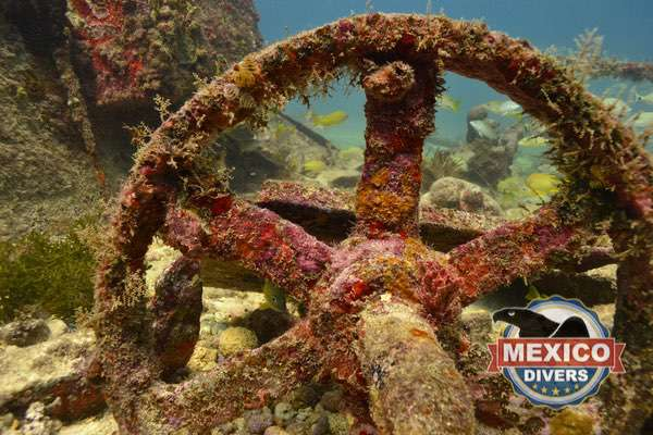 wreck diving in isla mujeres